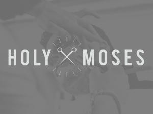 HolyMosesMock